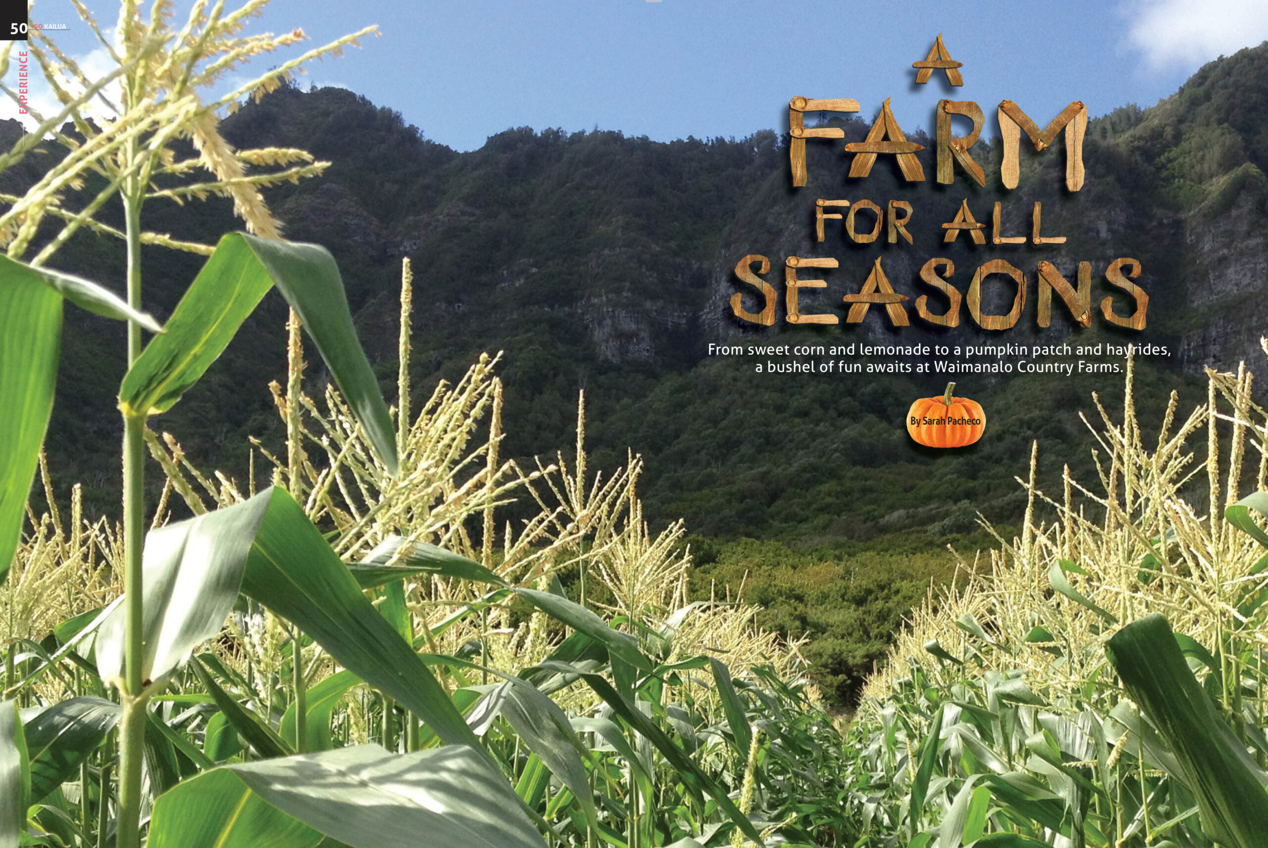 Farm-for-all-Seasons-scaled.jpg